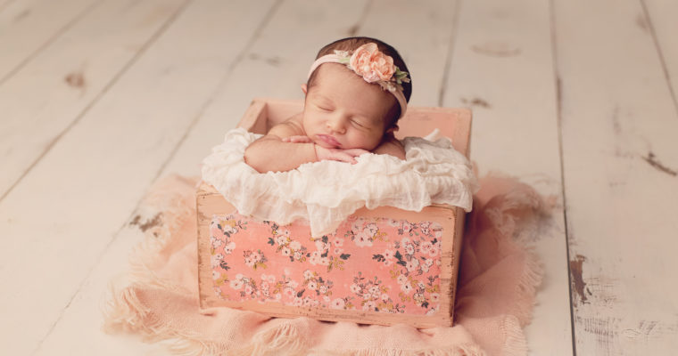 Aurora, Buffalo WNY Newborn Photographer