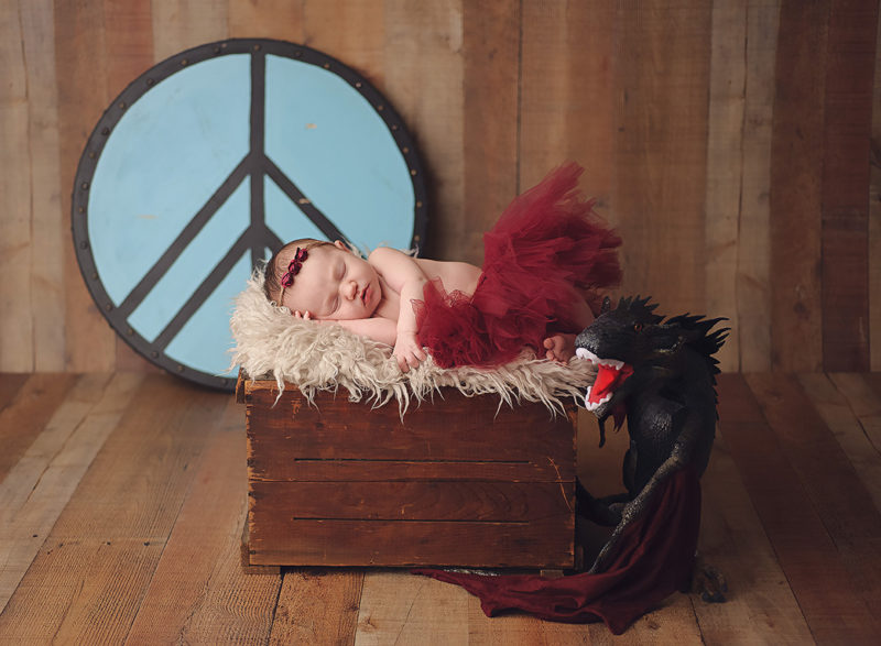 baby with viking shield and dragon in red tutu