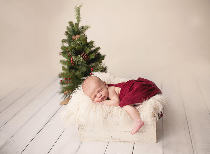 newborn boy laying in crate with christmas tree